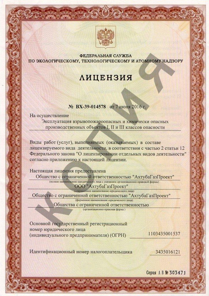 Лицензия (лист 1)